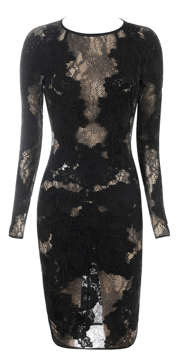 Clothing : Glamour Dresses : 'Nolita' Black Stretch Lace Long ...